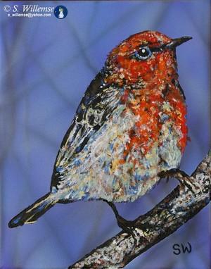 Scarlet honeyeater Art Australian Birds Susan Willemse