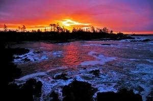 Uclulet Sunset