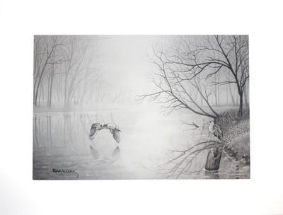 River Herons