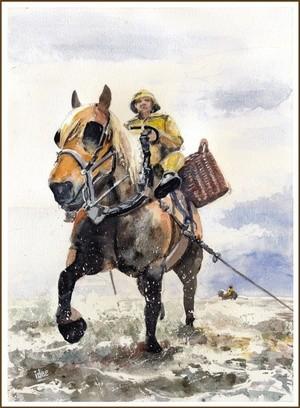 Shrimp fisherman on horseback