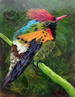 Tuffted Coquette Hummingbird