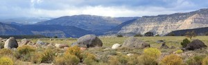 Blue Road Utah