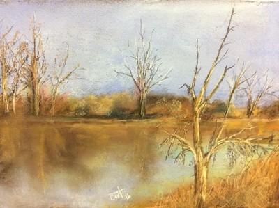 Backwater winter
