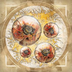 poppy sphere retro style