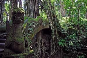 Bali Photos