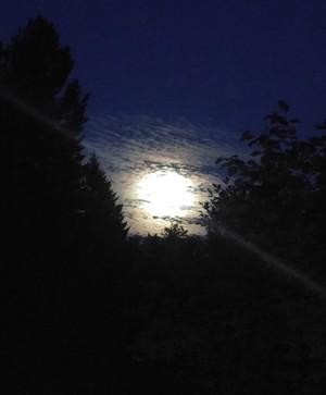 Moonlight at Night