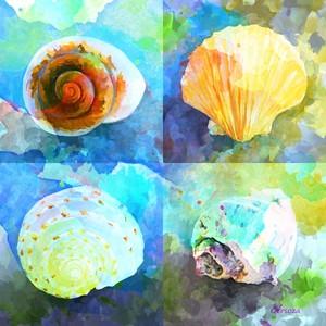 Digital Painted Shells