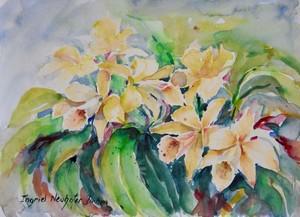 Watercolor Series 213