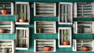 Flower Pots, Fruit Cages - Decorated Wall