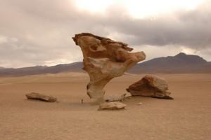 tree of stone