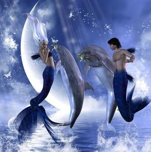 Magical Moonlight Meeting