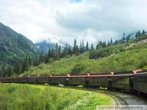 Train Ride to the Yukon of Alaska