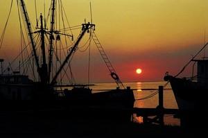 Shrimpboat Sunrise
