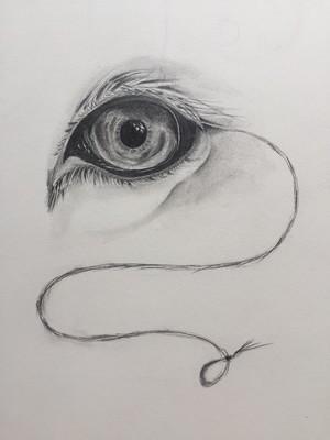 'Lion's Eyeleash'