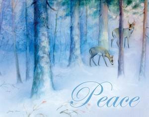 Softly December, Peace