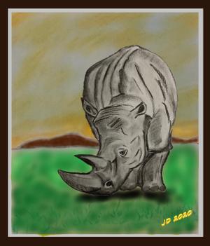 Rhino w bg 3D
