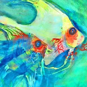 iconfish