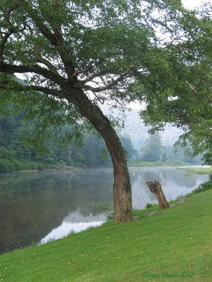 Greenbrier River on a Lazy Afternoon