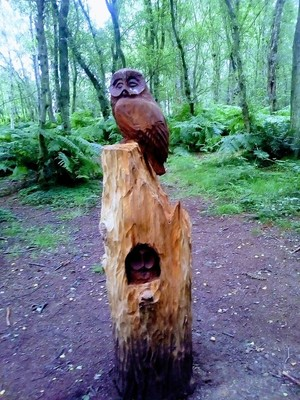 Woodland Artistry