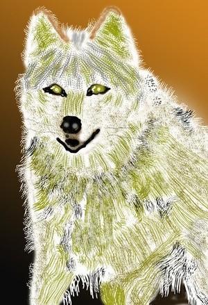 White Wolf  P280