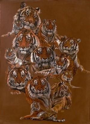 Tigers of Noah's