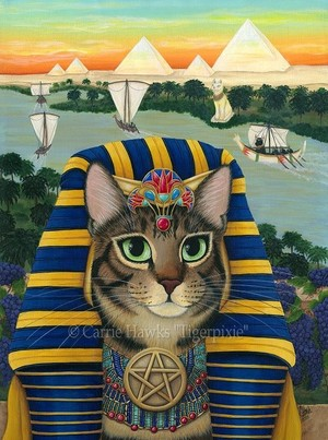 Egyptian Pharaoh Cat
