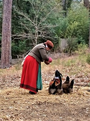 Colonial Woman Feeding Chickens