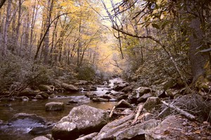 South Mountain Rolling Brook in the Fall
