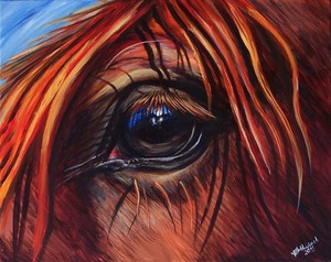 Horse Eye In Red