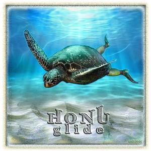 Honu Glide