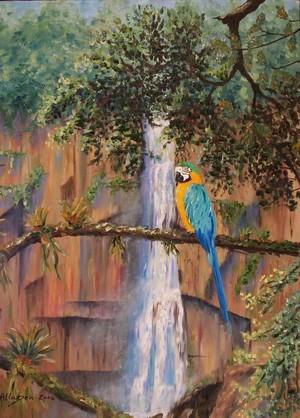Jungle Macaw