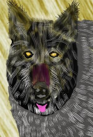 Black Wolf  P195