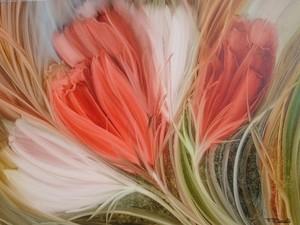 FS107 Soft tulips