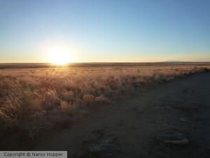 New Mexico Sun 2