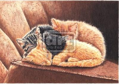 Kittens Slumber