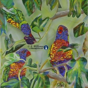 Rainbow Lorikeets in the fig tree Art Australian Birds Susan Willemse
