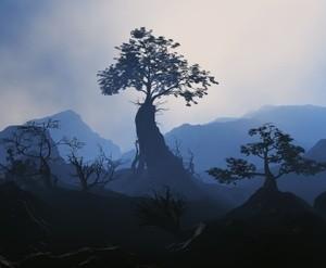 Prominent Tree