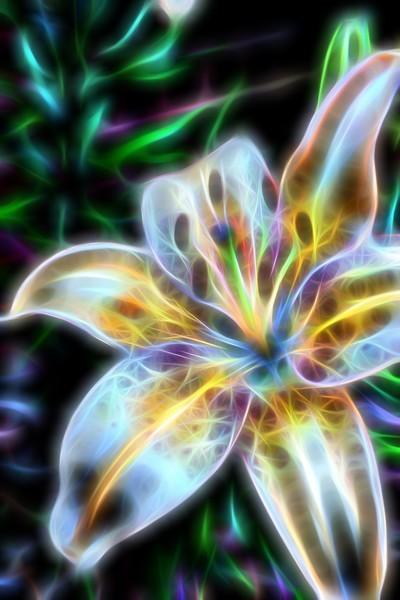 Fractalius Flowers 2015