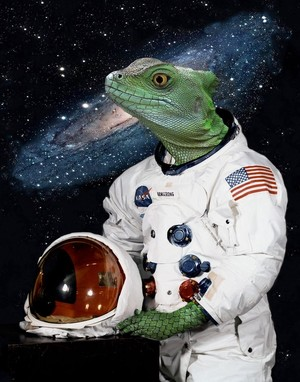 Space Lizard