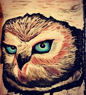 Albird