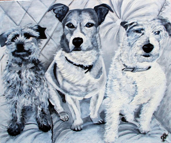 The Three Terriers