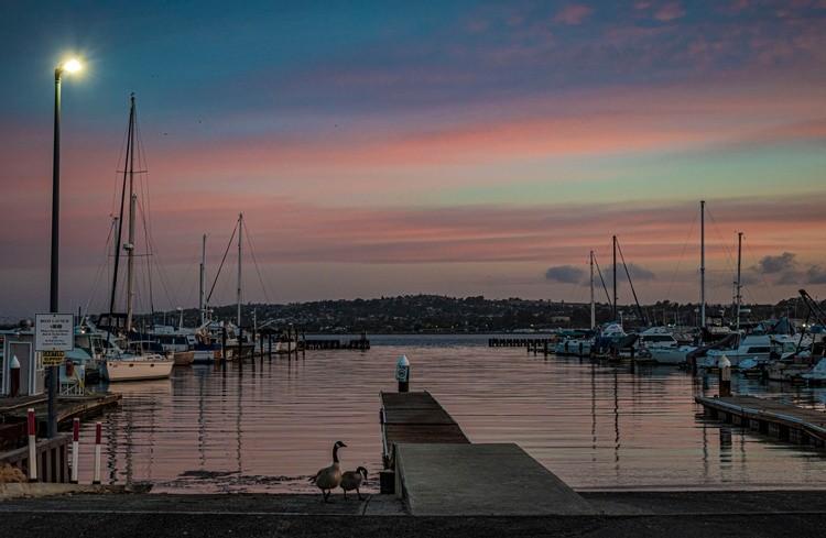 Marina at Dawn - April 2021