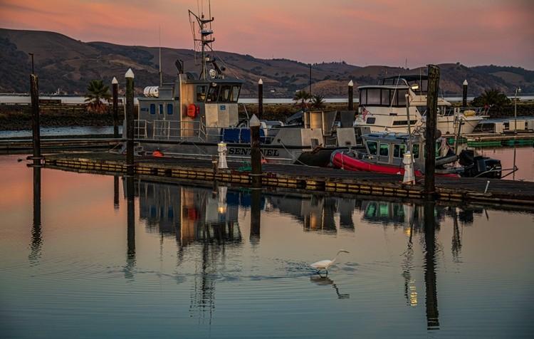 Marina at Dawn - October 2021