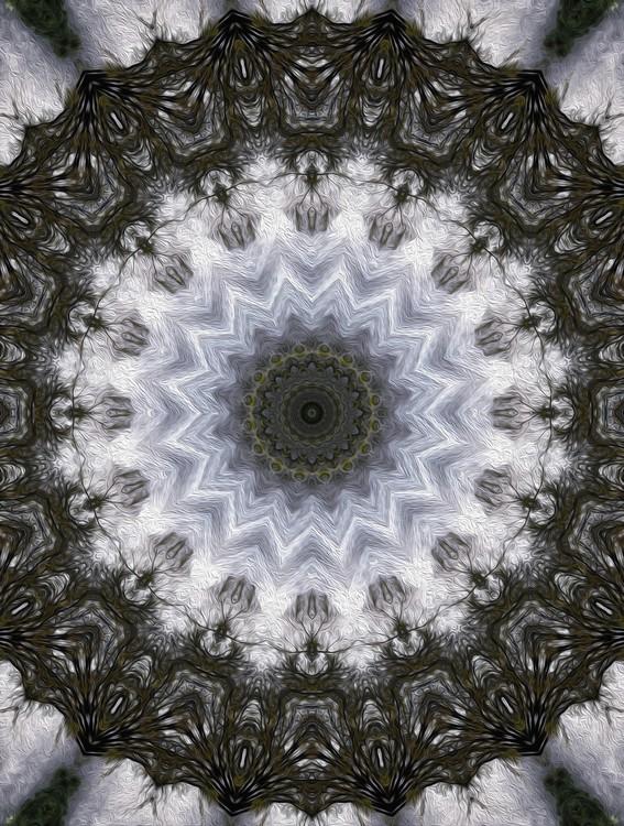 Painted Kaleidoscope 16