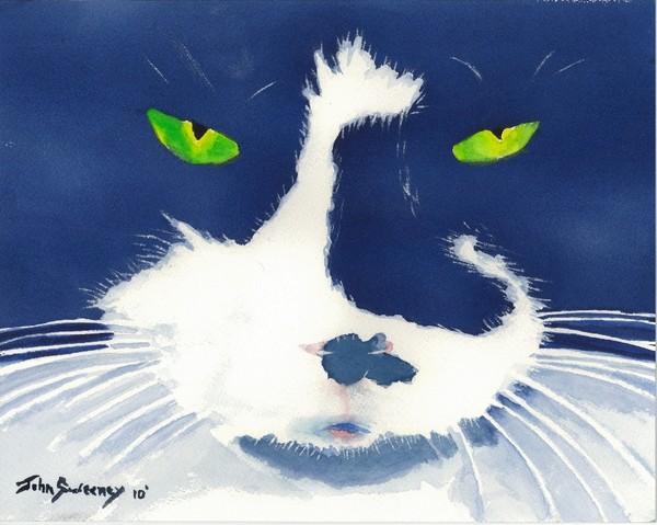 Louie - Crazed Kitty