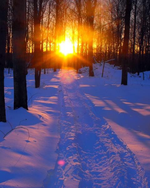 Sunset on Snowmobile Path