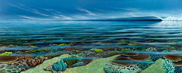 reef dreaming