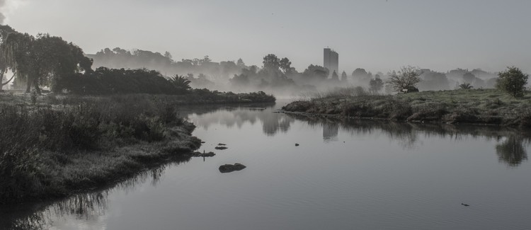 Martinez Shoreline - Pond with a touch of Fog at Dawn - March 2019