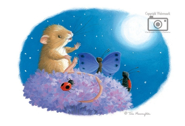 Mouse and the Moon - Page 8 - 20x15 - 8x6 - Website JPEG - WM100R