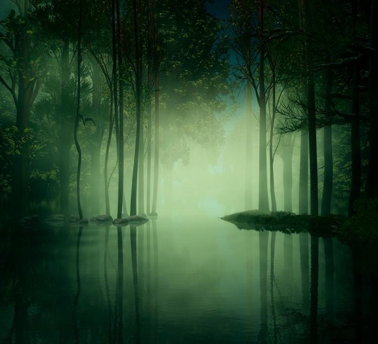 Somber Swamp